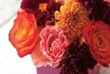Pretty Flowers / by babesta nyc