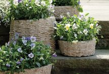Decorative Flowerpots