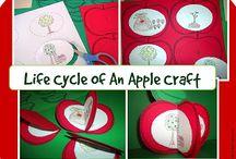 apples!!!!