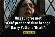 l'univers d'Harry Potter