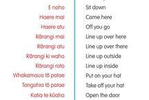 Maori ideas