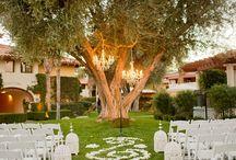 Wedding Ceremony / Where the new journey begins