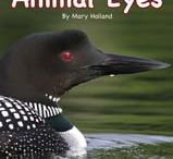 Animal Anatomy and Adaptations / A series by author and naturalist Mary Holland sure to wow children with incredible photographs and little known facts about the animals around us!