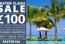 Our Holidays / All the latest holiday offers, sales, news and discounts!