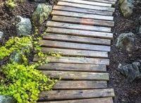 zahrada a dřevo