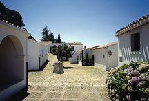 Sardegna : i musei