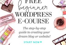 beginner wordpress blogger
