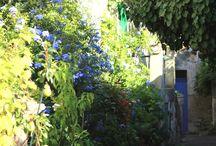 Madame la Provence / Un itinerario da fare in libertà, senza troppe scadenze o orari. Un territorio da vivere per tutto ciò che ha da offrire nelle sue continue metamorfosi.
