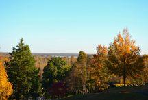 Fall Views
