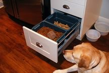 Pet food & Organized