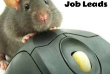 Daily Work from Home Job Leads / New legitimate work from home job leads almost every day!