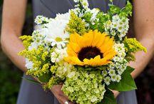 i love sunflowers / by Cheryl Kircher