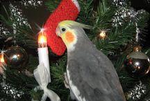 Kerst. Christmas. / all things around christmas. alles wat te maken heeft met kerst.