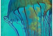 Many Faces of Jellyfish / by Sherry Kearney