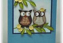 Birds, owls etc