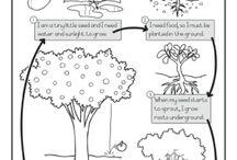 madarak fák világnapja