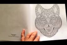 Adult Colouring Book Reviews by Shelly