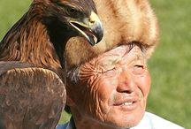 Kirgisia Kapua
