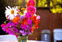 bouquets and flowers / by Jacquie Gagne