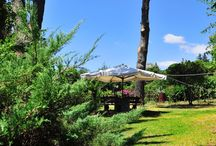 b&b Casa di Antonio / Nell'incantevole scenario dell'Etna, tra il blu del mare, il verde della natura e il nero del vulcano, potrete trovare un angolo di relax in questo b&b