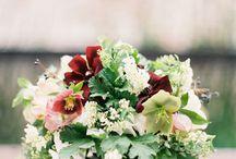 Melissa Wedding ideas / by Linda Pattyn Vandenbrink