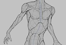 Anatomy for drawing - male