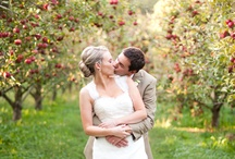 Eco-chic Apple Love / by Emerald Events & Weddings