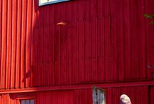 Barn blocks / by Linda Glover