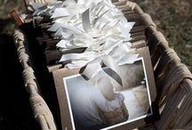 Wedding Programs / Outline your wedding ceremony with these stylish wedding programs.