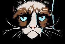 Grumpy Cat / The best of Grumpy Cat