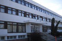 Csillebérci Szabadidő és Ifjúsági Központ / Osztálykirándulás és erdei iskola szállás