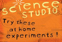 Science Experiments / by Dealin and Dishin