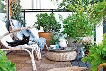 terrasse et cour