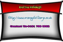 top red sea holidays