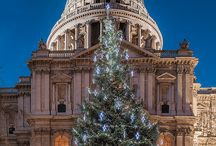 Christmas Trees in London / London twinkles and brightens as Christmas decoration marks the start of the festive period. See the main star of the show, Christmas trees, popup across London this festive season. How many have you seen?