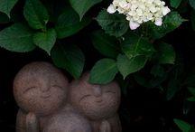 Japan...garden, temple...♡