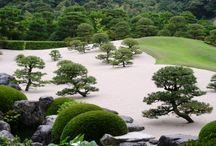 japonese garden