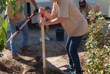 Green Day Event / Grab some gloves and give some of your time to making Santee Lakes a greener place! http://www.santeelakes.com/green-day/
