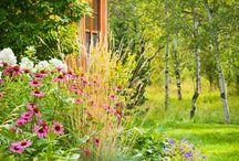 Krasne zahrady