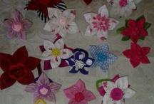 Coleteros flores