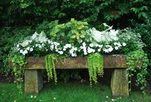 outdoor decor / by Dani Wetherby