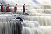Buddhist and Buddhism