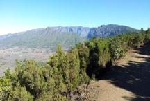Testimonios de Viajeros / ¿Qué opinan otras personas de su estancia en La Palma? ¿Qué te aconsejan? ¿Qué detallan?