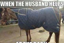 Horse#Pferd#Pony#lifestyle