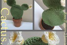 Fleur et cactus