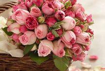 la vie an rose