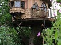 Treehouse dream to be real....