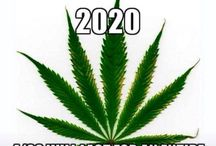 Cannabis Humor / Our collection of funny, marijuana-related jokes, quotes and photos.
