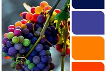 Color palettes / by Mandi Kotynski