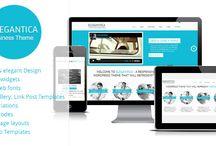 Web: Wordpress Premium Themes
